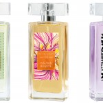THE COLLECTION Parfum